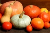 10874042-group-of-various-pumpkins