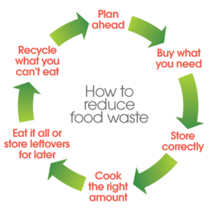 Food loop for consumers_0