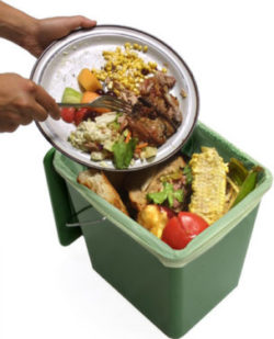 A Kitchen Pail with biodegradable liner.