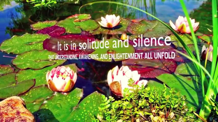 snapshot-silence-meditation
