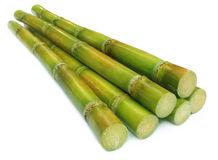 sugar-cane-20834122